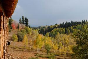 Deck in Fall
